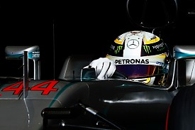 Hamilton calls for clarity on 'grey' rules